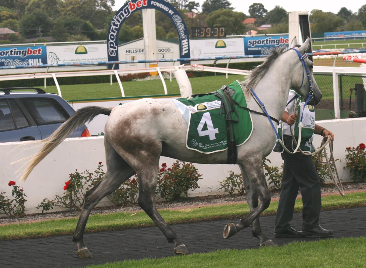 Millenium and Pegasus Melbourneb