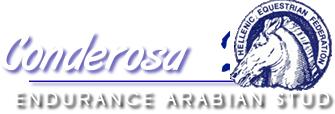 Conderosa Endurance Arabian Stud